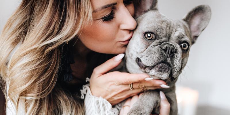 ¿Sabía que?: Tener un perro puede disminuir el riesgo de enfermedades del corazón.