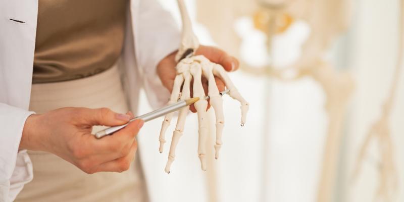 ¿Sabía que?: Más de la mitad de los huesos están en sus manos y pies.