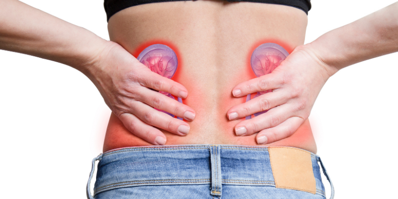 ¿Cuáles son las causas más comunes de enfermedad de los riñones?