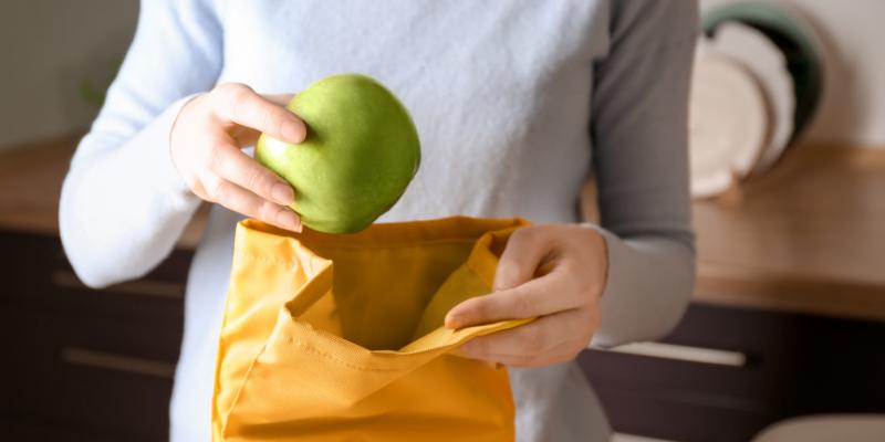 ¿Qué alimentos va a llevar si planea viajar en carro por largas distancias?